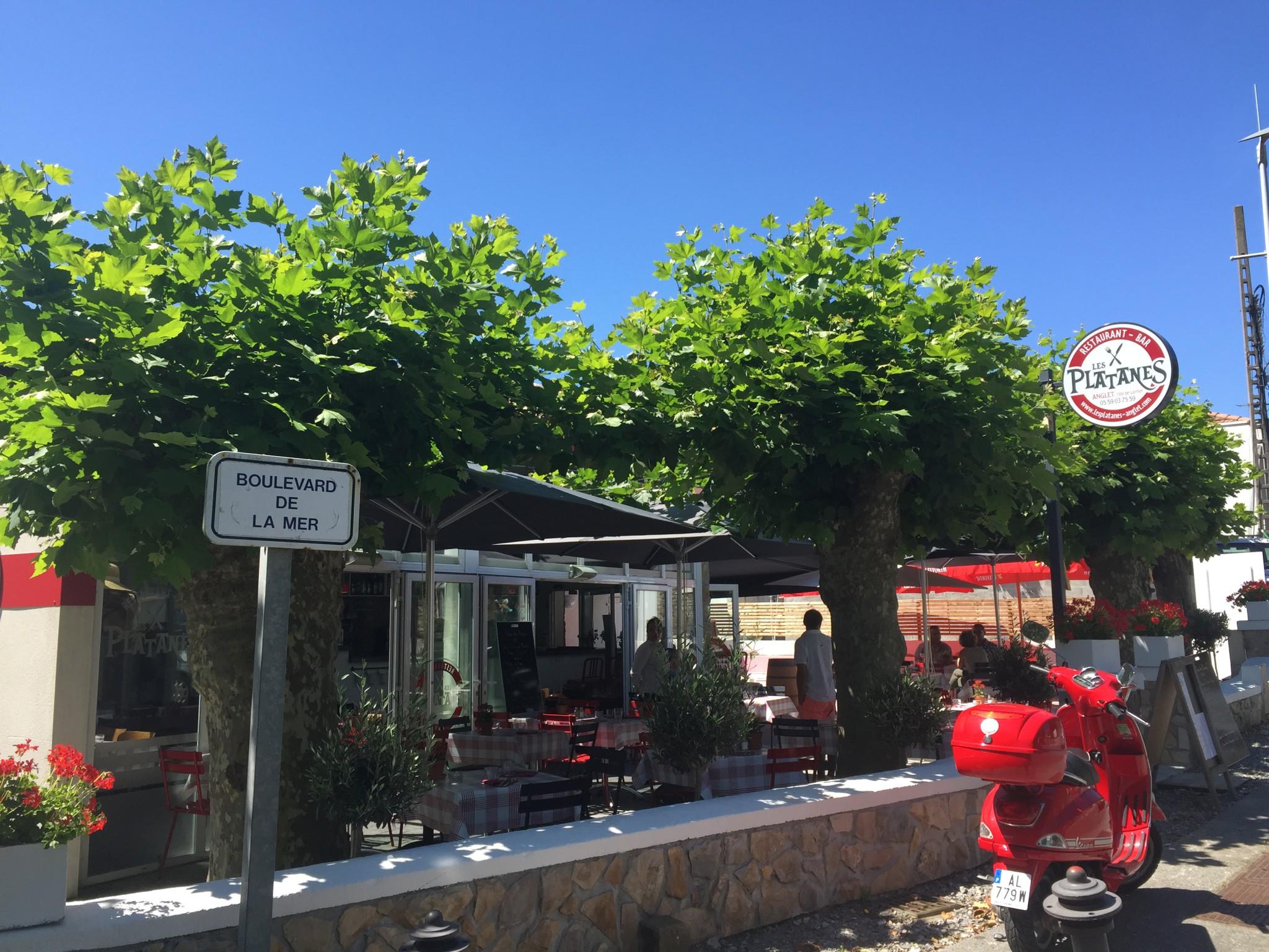 accueil restaurant les platanes